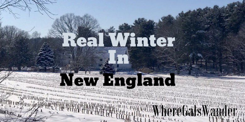 Real+Winter_WhereGalsWander
