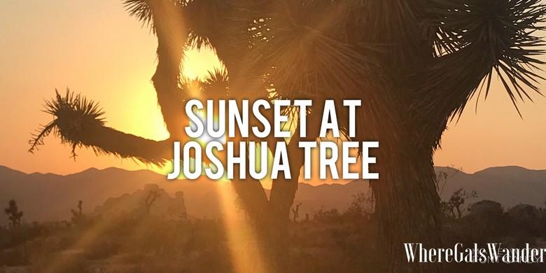 Sunset at Joshua Tree (1)