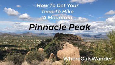 WhereGalsWander.com: Hiking Pinnacle Peak, Arizona family travel (16)