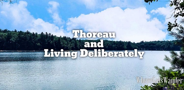 Thoreau Walden Woods Hiking WhereGalsWander